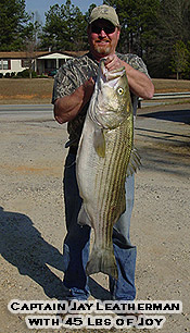 Stripers Unlimited, Inc - Fishing Guide Service on Clark Hill and Lake Murray